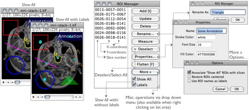 pixel values image j software