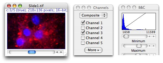 isodata algorithm image j software